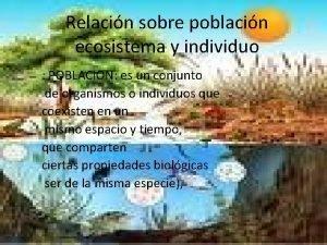 Relacin sobre poblacin ecosistema y individuo POBLACION es