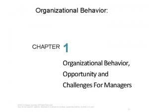 Organizational Behavior CHAPTER 1 Organizational Behavior Opportunity and