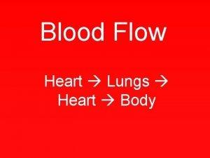 Blood Flow Heart Lungs Heart Body Vena Cava