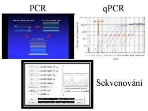 PCR q PCR Sekvenovn Genotypizace stanoven genotypu stanoven