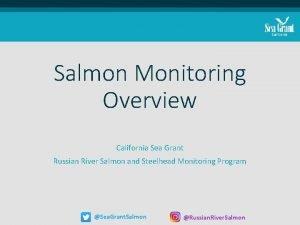 Salmon Monitoring Overview California Sea Grant Russian River