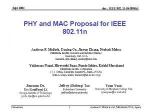 Sept 2004 doc IEEE 802 11 040996 r