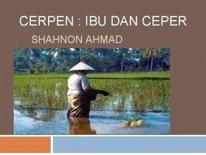 CERPEN IBU DAN CEPER SHAHNON AHMAD Sipnosis Kisah