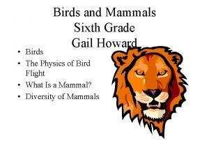 Birds and Mammals Sixth Grade Gail Howard Birds