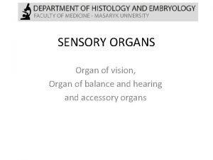 SENSORY ORGANS Organ of vision Organ of balance