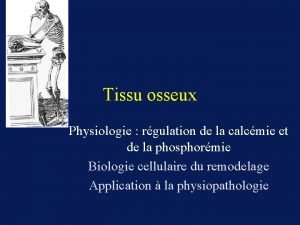 Tissu osseux Physiologie rgulation de la calcmie et