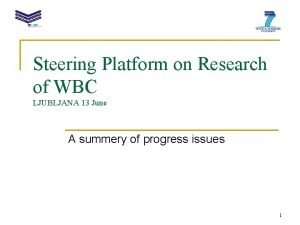 Steering Platform on Research of WBC LJUBLJANA 13
