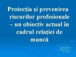 Protecia i prevenirea riscurilor profesionale un obiectiv actual