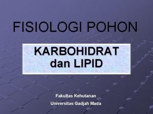 FISIOLOGI POHON KARBOHIDRAT dan LIPID Fakultas Kehutanan Universitas