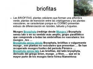 briofitas Las BRIFITAS plantas celulares que forman una