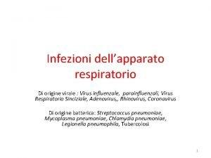 Infezioni dellapparato respiratorio Di origine virale Virus influenzale