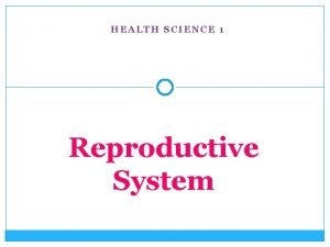 HEALTH SCIENCE 1 Reproductive System Female reproductive structures