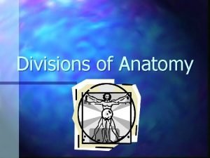 Divisions of Anatomy Anatomy n The study of