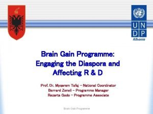 Brain Gain Programme Engaging the Diaspora and Affecting