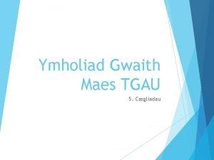 Ymholiad Gwaith Maes TGAU 5 Casgliadau Chwe cham