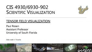 CIS 49306930 902 SCIENTIFIC VISUALIZATION TENSOR FIELD VISUALIZATION
