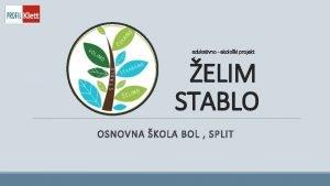 edukativno ekoloki projekt ELIM STABLO OSNOVNA KOLA BOL