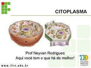 CITOPLASMA Prof Neyvan Rodrigues Aqui voc tem o