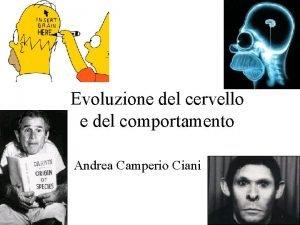 Evoluzione del cervello e del comportamento Andrea Camperio