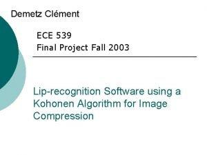Demetz Clment ECE 539 Final Project Fall 2003