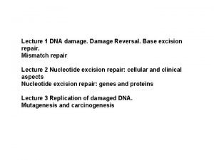 Lecture 1 DNA damage Damage Reversal Base excision