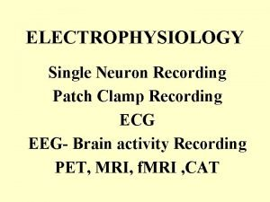 ELECTROPHYSIOLOGY Single Neuron Recording Patch Clamp Recording ECG