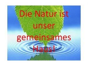 Die Natur ist unser gemeinsames Haus Warum die