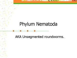 Phylum Nematoda AKA Unsegmented roundworms Nematodes n Advancements