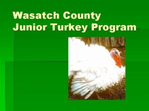 Wasatch County Junior Turkey Program Wasatch County Junior