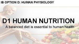 IB OPTION D HUMAN PHYSIOLOGY D 1 HUMAN