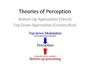 Theories of Perception BottomUp Approaches Direct TopDown Approaches
