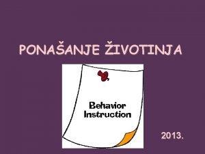 PONAANJE IVOTINJA 2013 Nastavnici Prof dr Lidija Radenovi