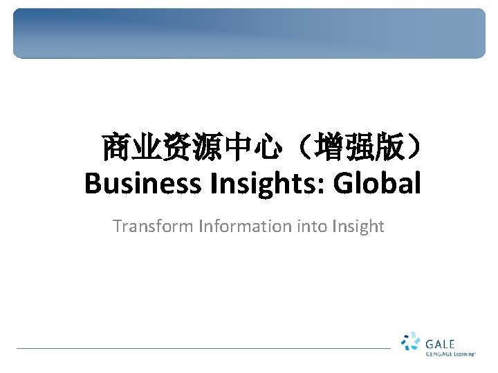 Business Insights Global Transform Information into Insight Case