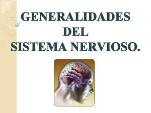 GENERALIDADES DEL SISTEMA NERVIOSO Sistema Nervioso Conjunto de