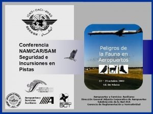 Conferencia NAMCARSAM Seguridad e Incursiones en Pistas Aeropuertos