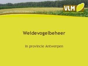 Weidevogelbeheer in provincie Antwerpen Weidevogelbeheer Beweiden Maaien Nestbescherming