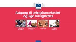 Adgang til arbejdsmarkedet og lige muligheder Uddannelse og