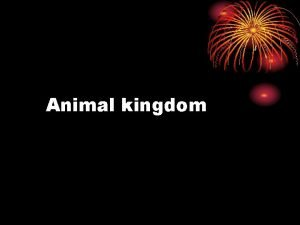 Animal kingdom Basis of classification There are certain
