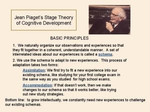 Jean Piagets Stage Theory of Cognitive Development BASIC