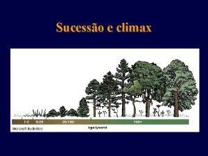 Sucesso e climax Dinmica das populaes Ecossistemas em