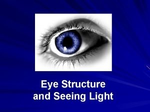Eye Structure and Seeing Light The eye is