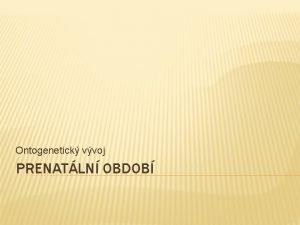 Ontogenetick vvoj PRENATLN OBDOB PRENATLN OBDOB clov skupina