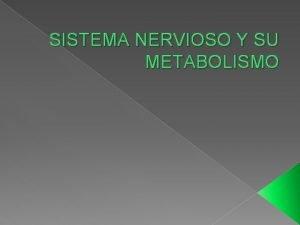 SISTEMA NERVIOSO Y SU METABOLISMO SISTEMA NERVIOSO EL