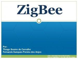 Zig Bee Por Thiago Soares de Carvalho Fernando