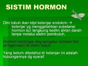 SISTIM HORMON Dlm tubuh ikan tdpt kelenjar endokrin
