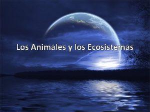 Los Animales y los Ecosistemas Los Ecosistemas Qu