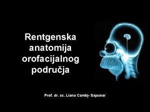 Rentgenska anatomija orofacijalnog podruja Prof dr sc Liana