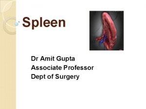 Spleen Dr Amit Gupta Associate Professor Dept of