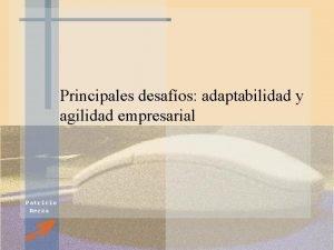Principales desafos adaptabilidad y agilidad empresarial Patricio Rezza