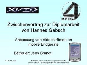 Zwischenvortrag zur Diplomarbeit von Hannes Gabsch Anpassung von